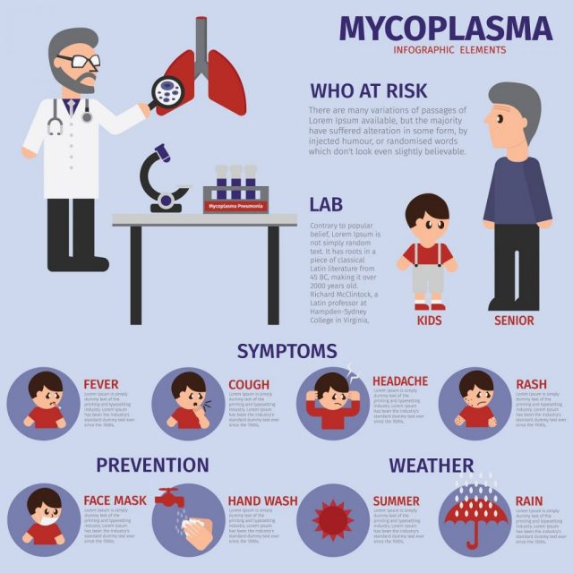Mycoplasma Symptoms