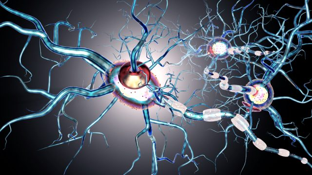 Degenerative Nerve Disease
