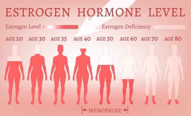 Foods Are Good for Estrogen in Women