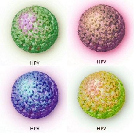 types and types of hpv vaccine Aavlp-hpv vaccine human papillomavirus type 16 there are more than 200 different types of human papillomavirus (hpv), of which approximately 40 are sexually transmitted and can cause cancers and warts.