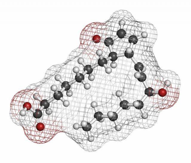 Prostaglandin A1 molecule