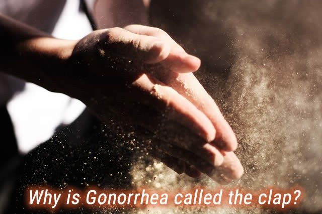 Why is Gonorrhea called the clap?