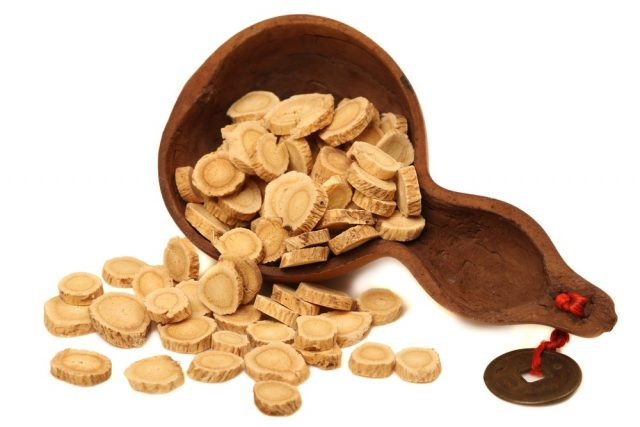 Astragalus root slices