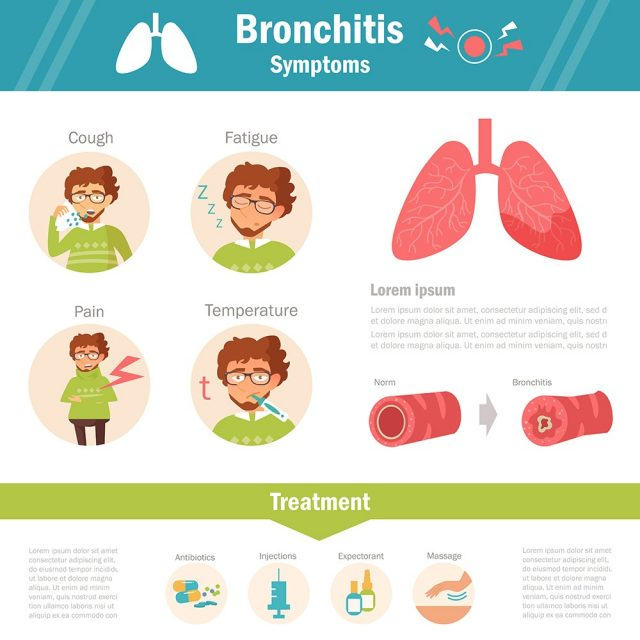 Bronchitis symptoms and treatment. Infographics