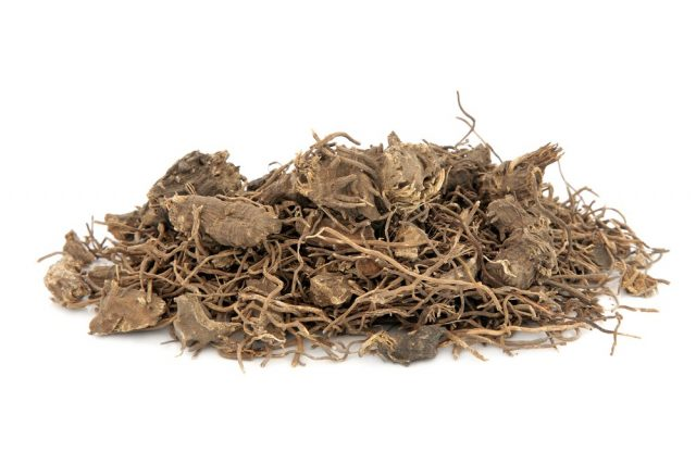 Black cohosh root herb