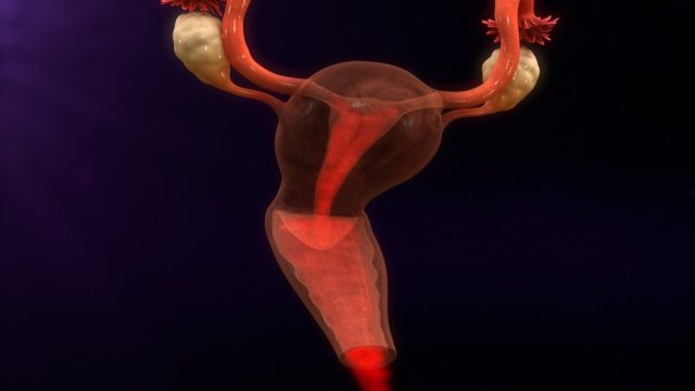 Menstruation bleeding 3d illustration