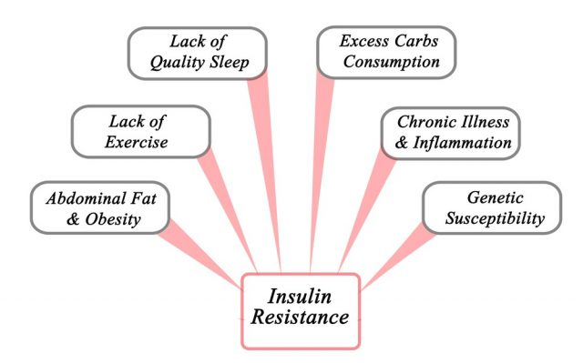 Causes of Insulin Resistance. Infographics