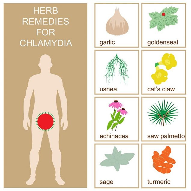 Herbal chlamydia remedies